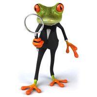 Frosch-einheiten-umrechnen