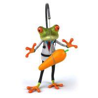 Frosch-grundgroessen