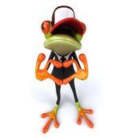 Frosch-koord