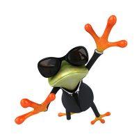 Frosch-term-was