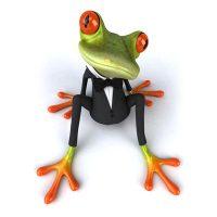 Frosch-trigo-berechnungen