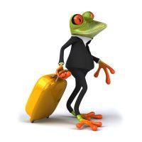 Frosch-zahlen-mengen-II