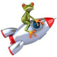 frosch-kurvendisk-theorie