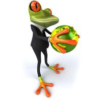 frosch-lin-fkt-zuordnen