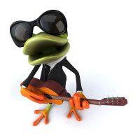 frosch-pyth-grundlagen