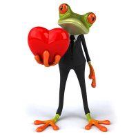 frosch-quadr-zuordnen
