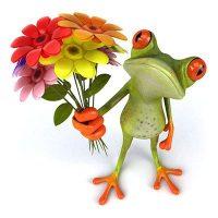 frosch-spiegeln-achsen