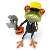 frosch-zahlenmengen