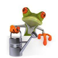 frosch-zehnerpot-verrechnen