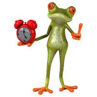 Frosch-allereihen-zeit