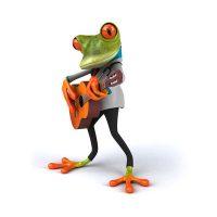 Frosch-wurefel-karten-urnen