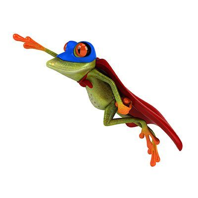 Frosch-int-poly